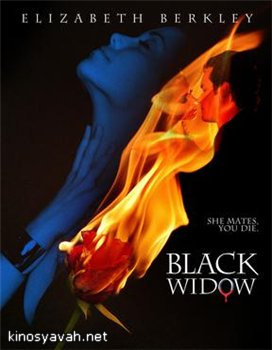 Чёрная вдова / Black widow (2008)